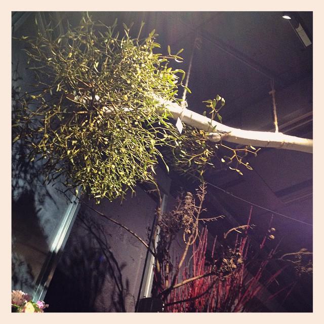 白樺の木に自生したヤドリギを天井から吊るしています。大きくて、シルエットのかっこいいオブジェの様。是非見に来て下さい!とっても素敵ですよ