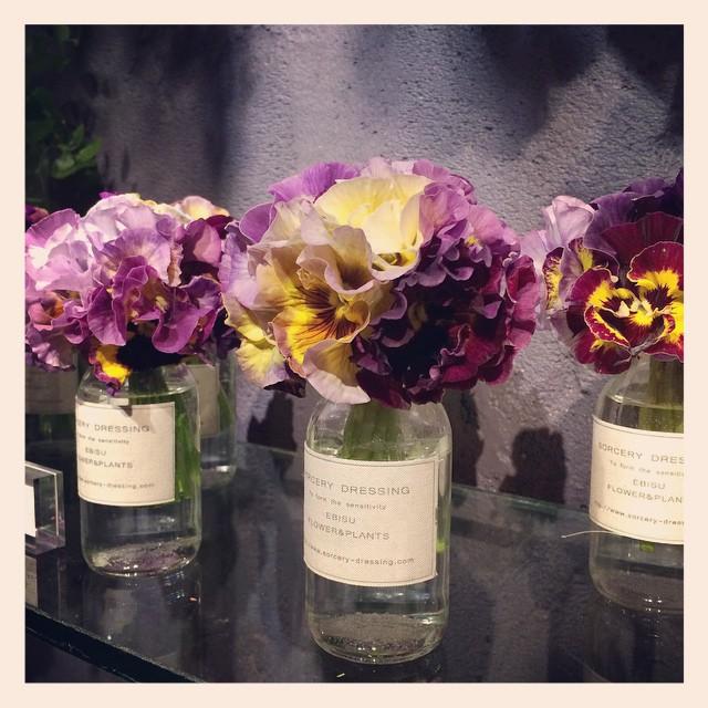 #パンジー オリジナルの花瓶とセットで