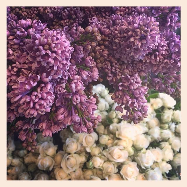 紫のライラックもたわわです#lilac