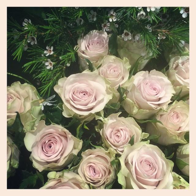 """大人気のバラ""""シルバーミスト""""右上の小さなお花は、国産のワックスフラワーです"""