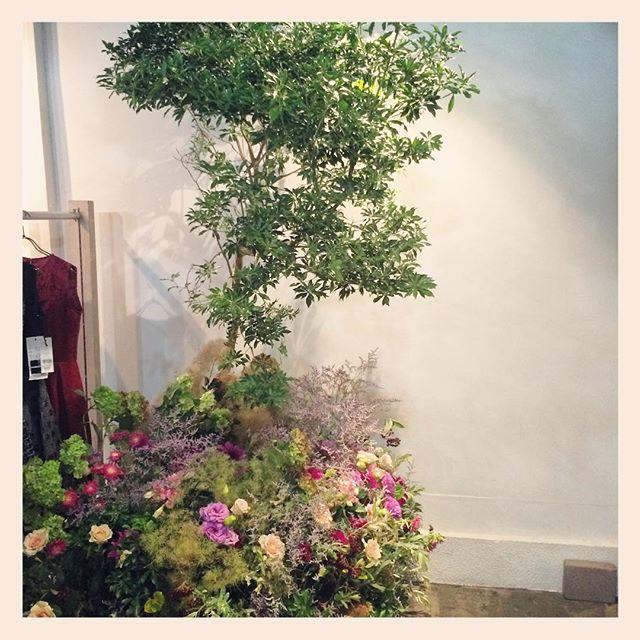 アパレル展示会秋物の装花をさせていただきました。会場の一角にアセボの木を生やし、その下に花で溢れるお庭を作りました。こんなご注文も承ってます