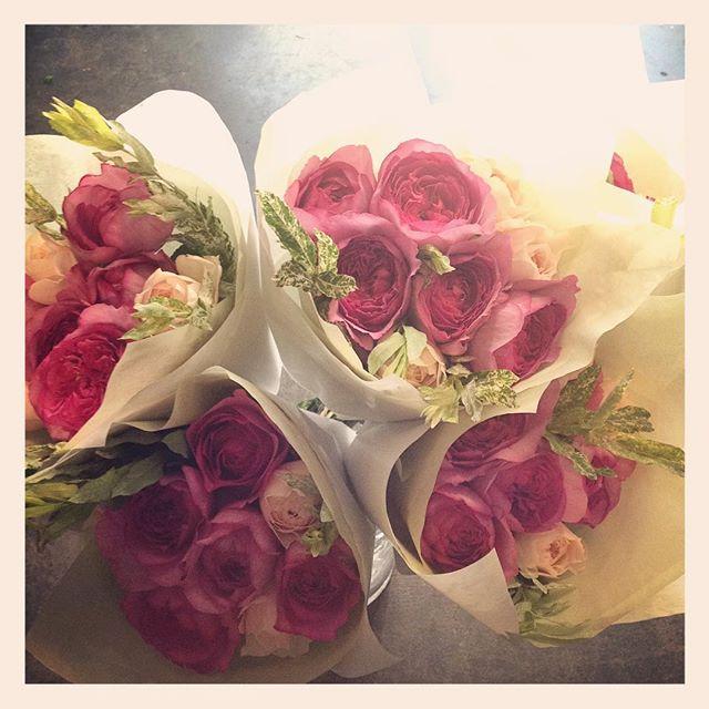 おはようございます。バラのトロワラスとイブピアッチェの香りの良い花束が本日のおすすめです️かなりお得です昨日切り花もたくさん入荷しております。鉢ものも本日昼過ぎに入荷予定です。ぜひのぞいてみてください