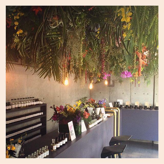 当店が装花したアメックスの会場では、パリでご活躍されている調香師の新間美也さんが、恋人や友人など大切な人との思い出を、香水にしてくれます️どなたでもフリーでご参加頂けます。なかなか経験できない貴重な体験です迫力のあるお花も見ものです12日(土)、13日(日)限定11時から22時まで。会場は表参道を登り切り交差点を渡って246を右に曲がったZERO BASEという建物。ZARA HOMEの隣です🌲#FNOJP