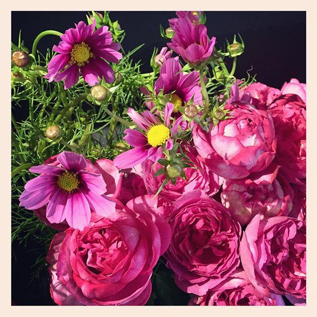 9月21日(月)敬老の日ご予約承っております。全国への発送もできます。感謝の気持ちを込めた素敵な贈り物のお手伝いをさせていただきます#コスモス #イブピアッチェ