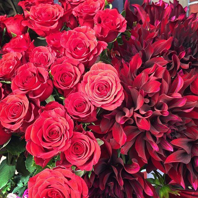 想いを伝える際にお花を12本贈る。ヨーロッパにはダズンブーケと呼ばれる風習があるそうで、12本のバラにはそれぞれに感謝や尊敬、幸福、永遠など12の意味があるそうです。それをすべて大切な方に誓う。そんな想いをこめてさりげないお花の贈り物はいかがですか?素敵なお花と共にご来店お待ちしております