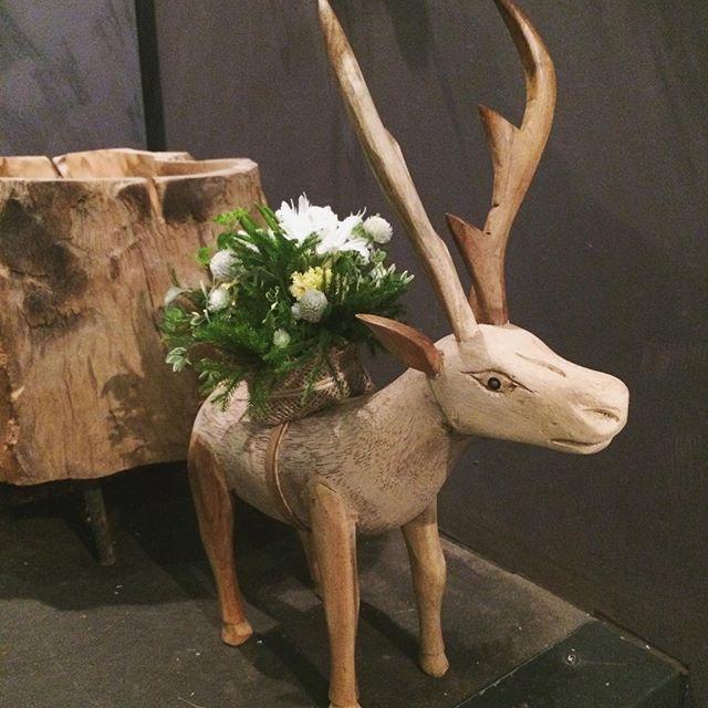 飲食店への御祝いのお花。木彫りのトナカイにお花を背負わせて…