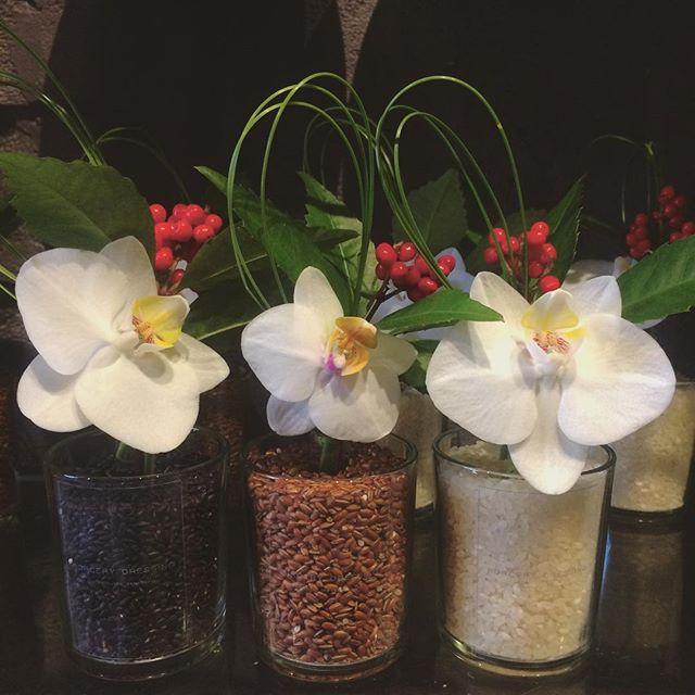 三色のお米のお飾り。左から黒米、赤米、白米。元気の源のお米に幸せを運んでくる胡蝶蘭一輪と千両大王松を少し添えて…こちらは¥2.000(税別)となります