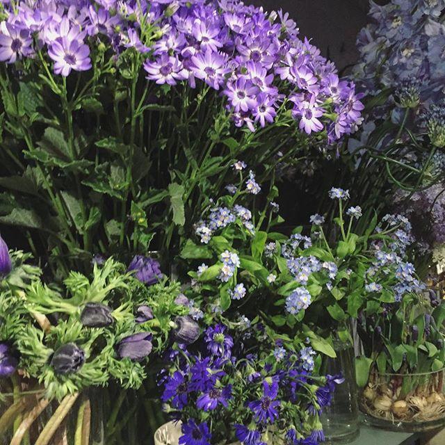 ブルー系のお花。男性女性問わず大人気の色。ブルーだけでまとめても、他の色の中に入れてもアクセントになって素敵です
