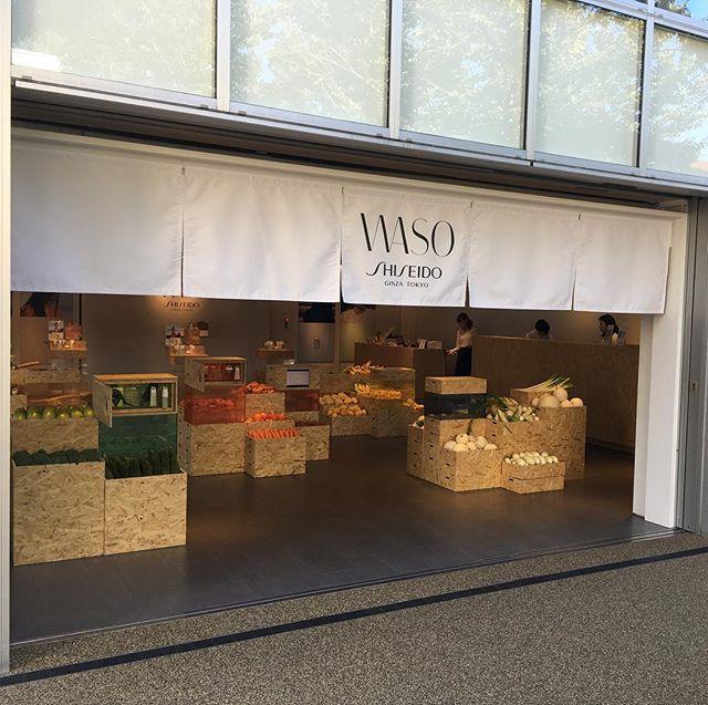 資生堂waso 原料であるニンジン、びわの葉、豆腐、白キクラゲ、蜂蜜を各色の野菜と共に展示しております。DAIKANYAMA T-SITE GARDEN GALLERYにて本日最終日です。是非お立ち寄り下さい。