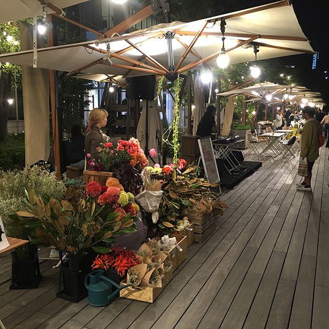 本日より週末にかけて、天王洲で開催しておりますアートブックフェアにて、ボンドストリート裏手の運河沿いに出店しております。お立ち寄りの際は是非遊びに来てください!