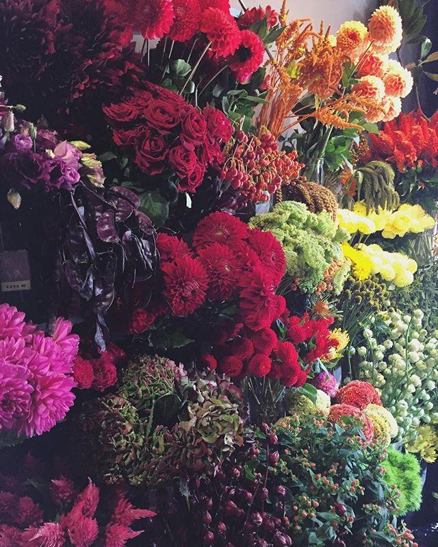 本日より営業時間が変更となります。月、火、水、土→10:00-21:30木、金→10:00-23:00日、祝→10:00-20:00今日も秋色のお花がたくさん並んでおります。ご来店お待ちしております