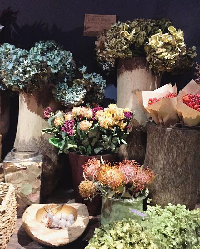 ドライフラワーたくさん入荷しましたブーケやスワッグになっているものもありますが、アジサイやバラ、ネイティヴフラワー系のお花は一本ずつお売りしてます。ドライフラワーはほとんどお店で作ったものです。生花同様、変わったお花もたくさんあります。ぜひお気に入りを見つけてください