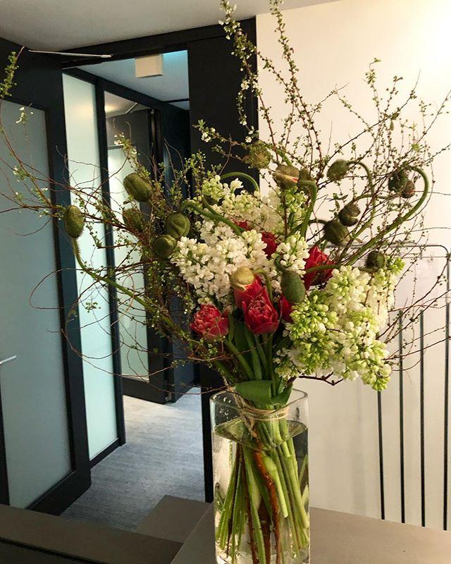株式会社ZARA JAPAN様本社の受付の定期装花を担当させていただいております。大ぶりなポピーをたくさん踊らせた春の装花。ユキヤナギやチューリップの変化も楽しんでいただけます️ 定期的な装花、大小問わずご相談承っております。#sorcerydressing #ソーセリードレッシング #poppy #ポピー #lilac #ライラック #Spiraea #ユキヤナギ #tulip #チューリップ