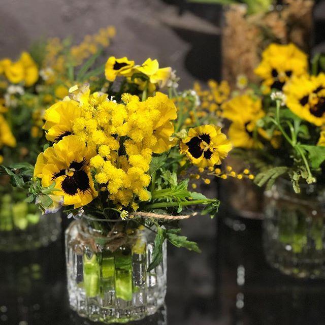 パンジーとミモザのブーケ、根付きのスズラン、球根付き、ムスカリ、ヒヤシンス、原種系チューリップ。ガラスの花瓶とセットで贈り物に…#sorcerydressing #ソーセリードレッシング #pansy #パンジー #mimosa #ミモザ #Lilyofthevalley #スズラン #Muscari #ムスカリ #hyacinth #ヒヤシンス #tulip #チューリップ