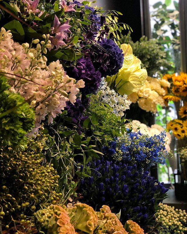 スタッフ募集1〜2名程。本気で花に打ち込める方を募集しております。花屋として必要不可欠な基礎や知識をベースにし、植物の魅力を伝える事を仕事とする花屋です。応募条件年齢性別不問元気のある方責任感が強く、向上心のある方心身共にタフな方好奇心旺盛で弊社で仕事がしたいという強い意志のある方のみご応募ください。詳細は︎又は️にてお問い合わせ下さい。#SORCERYDRESSING #ソーセリードレッシング