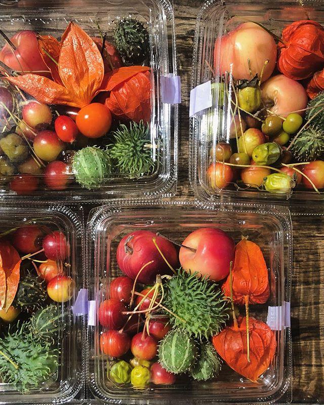 秋は実ものが豊富に出回ります。店頭に秋の実ものセットをお出ししました。#sorcerydressing  #ソーセリードレッシング
