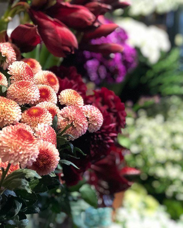 お正月用の春の草花、お飾り、店頭にたくさん並べております。年末年始の営業時間30日 / 10時→21時半31日 / 10時→20時1.2.3日 / お休み4.5日 / 10時→17時6日より通常営業。ご来店お待ちしております。