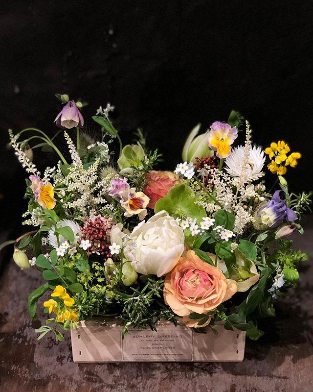 色んな種類の草花で、カラフルに春らしく。ホワイトデーの贈り物、ご予約承っております。