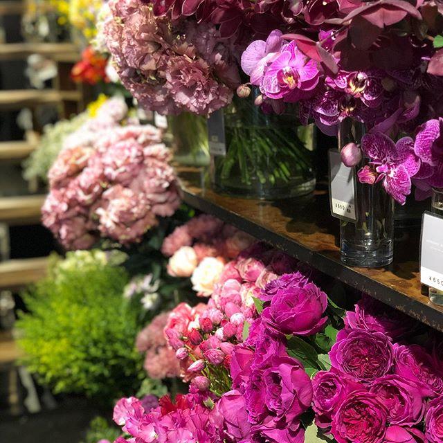 3/30〜4/2の営業に関して引き続きお電話(10時〜19時)やメールでのご来店注文、配送注文のみとさせていただきます。ご来店時に、店入口にてドア越しにお渡しする形でご対応させて頂きます。(店内でお花をお選び頂く事は出来かねます。)こんな時だからこそお花を。というお気持ちもあるかと思いますので、お花はお任せとなりますが、ご自宅への発送も承っております。4/3以降に関しましては、改めてご報告させて頂きます。何卒、ご理解頂けます様お願い申し上げます。また、お客様もリスクのあるご来店は、なるべくお控え頂けます様御協力をお願い致します。この事態が終息し、皆さまが安心してご来店できる環境になった際には、必ず花が身近に感じられ、ワクワクするお店を更に目指し、お花の仕入れ、メンテナンス共に力を注いで参ります!