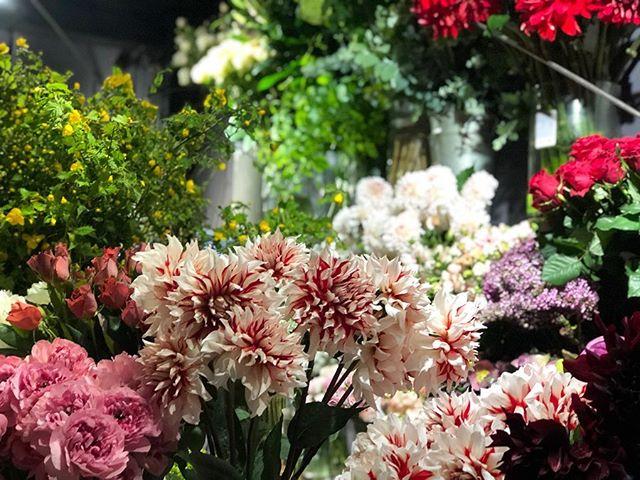 昨日たくさんのお花が入荷いたしました。店内のレイアウトを変え、外からでもお花が選んでいただけるようにになりました。お花を抜くのはスタッフが対応させていただきます。以前と同じ様にはできませんが、たくさんのお花の中から好きなお花を組み合わせて選ぶ楽しさは味わっていただけるかと思います。近隣、お仕事帰りの方々、ご来店お待ちしております。全国へのご配送も承っております。たくさんの素晴らしいお花が、みなさんの元へ届きますように。こんな時こそお花を