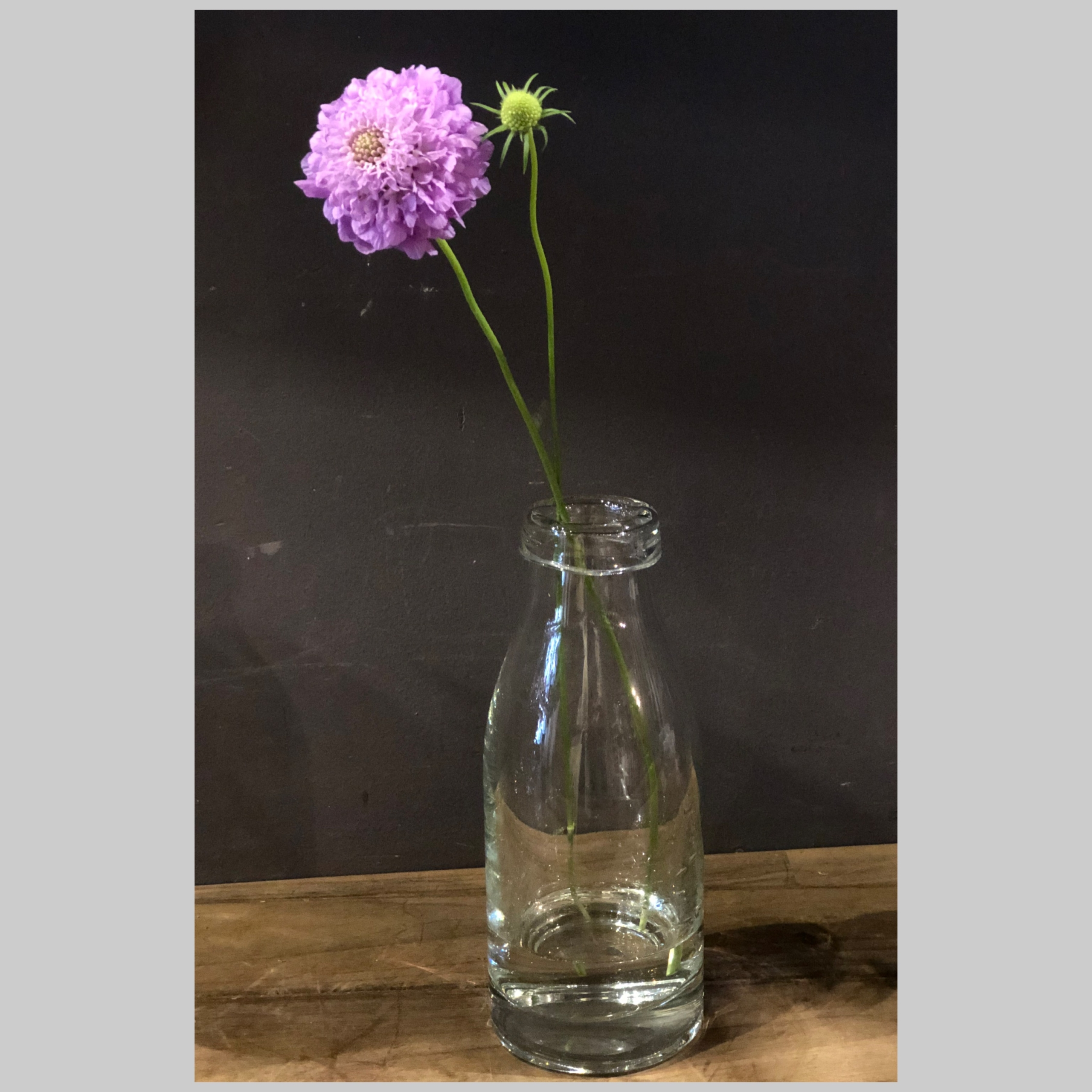 vase0002-milkbottle